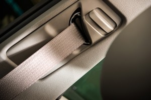 Image-3.11-Seatbelt